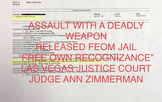 ASSAULT WITH A DEADLY WEAPON - UNACCOUNTABLE JAIL RELEASE