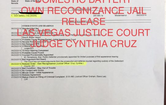DOMESTIC VIOLENCE CHARGES - UNACCOUNTABLE JAIL RELEASE