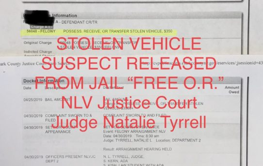 Possess / receive or transfer stolen vehicle - Unaccountable jail release