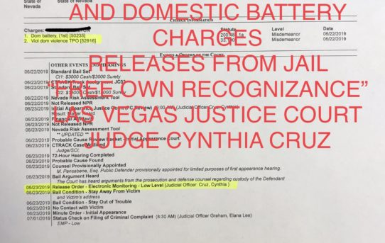 VIOLATE PROTECTIVE ORDER & DOMESTIC BATTERY CHARGES - UNACCOUNTABLE JAIL RELEASE