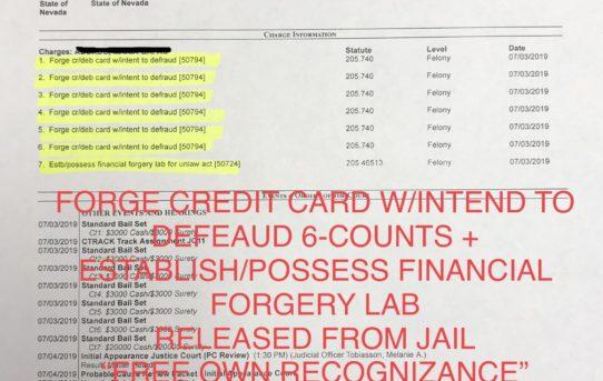 "FORGE CREDIT CARD 6-COUNTS & ESTABLISH/POSS. FINANCIAL FORGERY LAB - ""O.R."" RELEASE JUDGE MELANIE TOBIASSON"