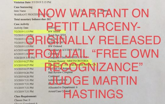 "PETIT LARCENY ""O.R."" RELEASED THEN NO-SHOW - JUDGE MARTIN HASTINGS"
