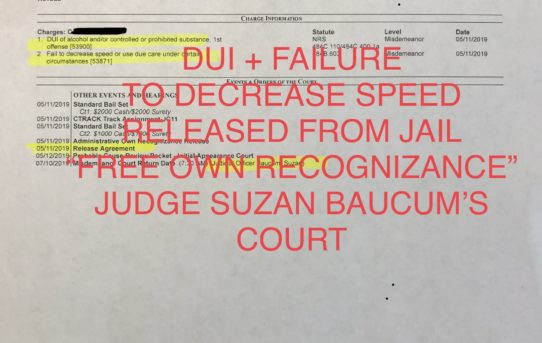 "DUI + FAILURE TO DECREASE SPEED - ""O.R."" RELEASE JUDGE SUZAN BAUCUM'S COURT"