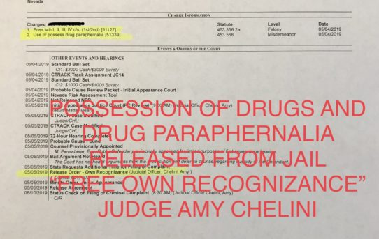 "POSSESSION OF DRUGS + PARAPHERNALIA - ""O.R."" RELEASE JUDGE AMY CHELINI"