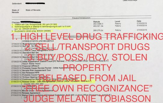 "HIGH LEVEL DRUG TRAFFICKING + SELL/TRANS. DRUGS + BUY/POSS. STOLEN PROPERTY - ""O.R."" RELEASE JUDGE MELANIE TOBIASSON"