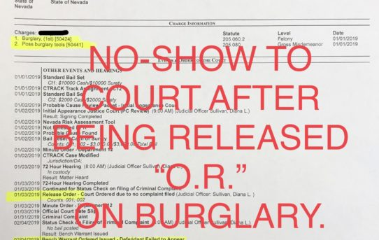 "NO-SHOW TO COURT AFTER ""O.R."" ON BURGLARY - JUDGE DIANA SULLIVAN"