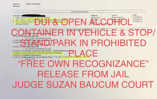 "DUI & OPEN ALCOHOL CONT. IN VEHICLE - ""O.R."" RELEASE JUDGE SUZAN BAUCUM"