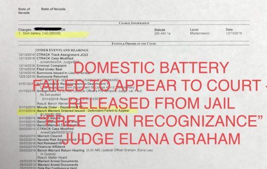 "DOMESTIC BATTERY / FAILED TO APPEAR FIRST TIME - ""O.R."" RELEASE JUDGE ELANA GRAHAM"