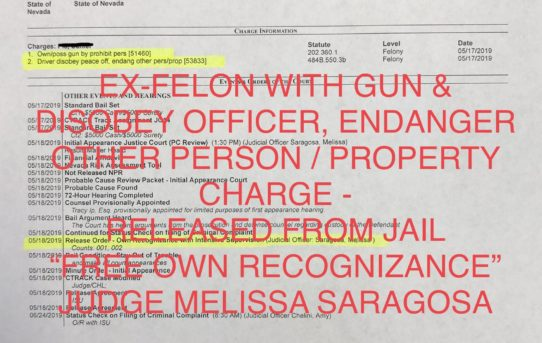 "EX-FELON WITH GUN & DISOBEY OFFICER & ENDANGER OTHER PERSON - ""O.R."" RELEASE JUDGE MELISSA SARAGOSA"