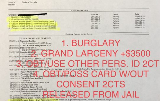 "BURGLARY + GRAND LARCENY + 4CTS OF ID/CREDIT CARD FRAUD - ""O.R."" RELEASED JUDGE HOLLY STOBERSKI"
