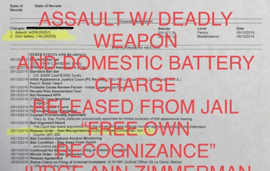 "ASSAULT W/DEADLY WEAPON & DOMESTIC BATTERY - ""O.R."" RELEASE JUDGE ANN ZIMMERMAN"