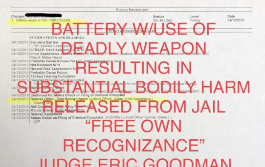 "BATTERY W/DEADLY WEAPON RESULTING IN SUBS. BODILY HARM - ""O.R."" RELEASE JUDGE ERIC GOODMAN"
