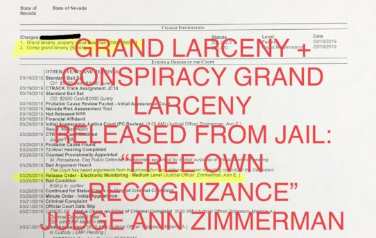 "GRAND LARCENY + CONSPIRACY GRAND LARCENY - ""O.R."" RELEASE JUDGE ANN ZIMMERMAN"