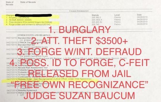 "BURGLARY + ATT. THEFT + FORGE/C-FEIT + FORGE W/INT. DEFRAUD - ""O.R."" RELEASE JUDGE ANN ZIMMERMAN"