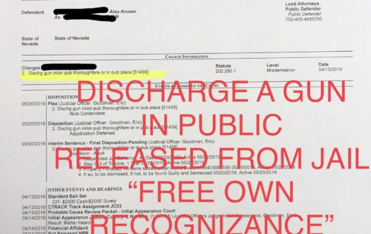 "DISCHARGE A GUN IN PUBLIC - ""O.R."" RELEASE JUDGE ERIC GOODMAN"