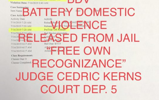 "BATTERY DOMESTIC VIOLENCE - ""O.R."" RELEASE JUDGE CEDRIC KERN"