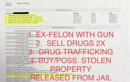 "EX-FELON W/GUN + DRUG TRAFFICKING ETC. - ""O.R."" RELEASE JUDGE AMY CHELINI"