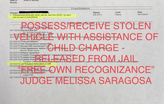 "POSSESS/RECEIVE STOLEN VEHICLE W/ASST OF CHILD - ""O.R."" RELEASE JUDGE MELISSA SARAGOSA"
