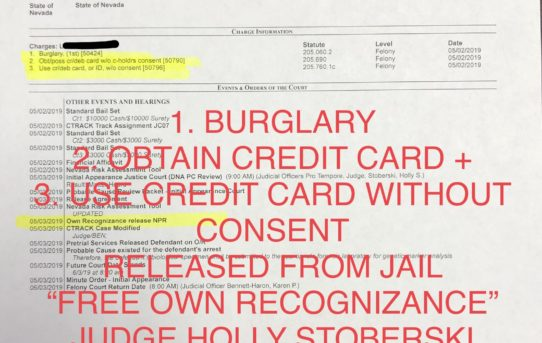 "BURGLARY+OBTAIN+USE CREDIT CARD W/OUT CONSENT - ""O.R."" RELEASE JUDGE HOLLY STOBERSKI"