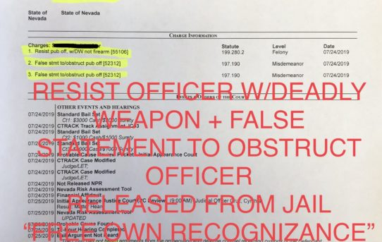 "RESIST OFFICER w/DEADLY WEAPON + OBSTRUCTION 2x - ""O.R."" RELEASE JUDGE CYNTHIA CRUZ"