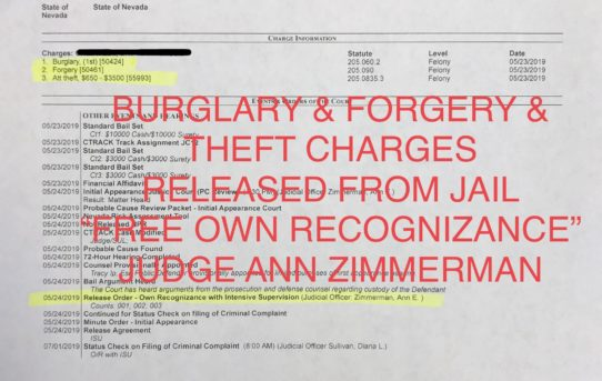 "BURGLARY & FORGERY & THEFT - ""O.R"" RELEASE JUDGE ANN ZIMMERMAN"