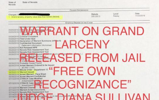 "WARRANT GRAND LARCENY - ""O.R."" RELEASE JUDGE DIANA SULLIVAN"