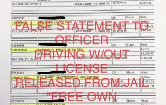 """LYING TO OFFICER+DRIVING W/OUT LICENSE - """"O.R."""" RELEASE JUDGE DIANA SULLIVAN"""
