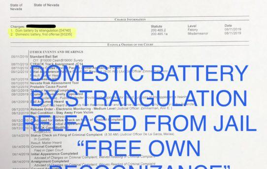 "DOM. BATT. BY STRANGULATION - ""O.R."" RELEASE JUDGE MELISA DE LA GARZA"