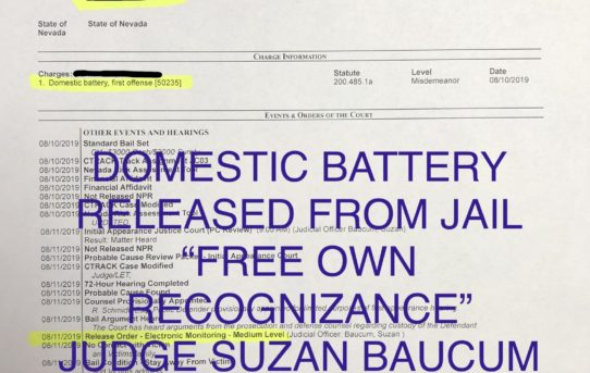 "DOMESTIC BATTERY - ""O.R."" RELEASE JUDGE SUZAN BAUCUM"