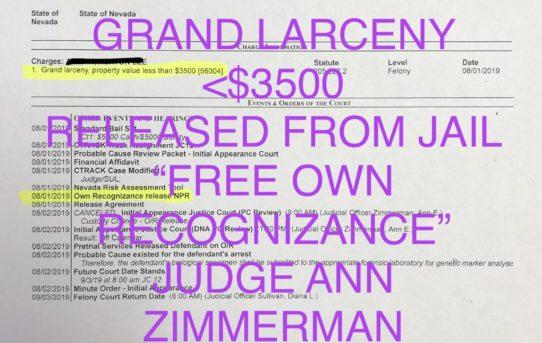 "GRAND LARCENY <$3500 - ""O.R."" RELEASE JUDGE ANN ZIMMERMAN"