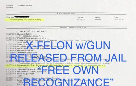 "X-FELON w/GUN - ""O.R."" RELEASE JUDGE ANN ZIMMERMAN"