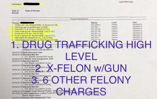 "HIGH LEVEL DRUG TRAFFICKING + X-FELON w/GUN + 6 OTHER FELONY CHARGES - ""O.R."" RELEASE JUDGE SUZAN BAUCUM"