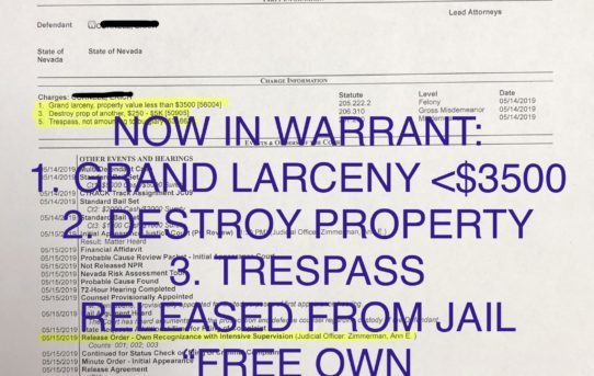 "GRAND LARCENY + DESTROY PROPERTY + TRESPASS - ""O.R."" RELEASE JUDGE ANN ZIMMERMAN"