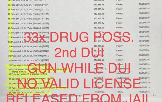 """33x DRUG POSS.+2nd DUI+GUN WHILE DUI - """"O.R."""" RELEASE JUDGE ANN ZIMMERMAN"""