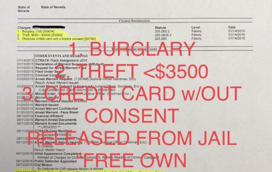 "BURGLARY + THEFT <$3500 - ""O.R."" RELEASE JUDGE ERIC GOODMAN"