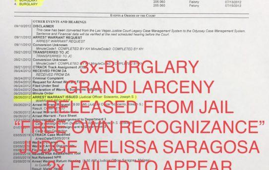 "3x BURGLARY+GRAND LARCENY F.T.A. - ""O.R."" RELEASE JUDGE MELISSA SARAGOSA"