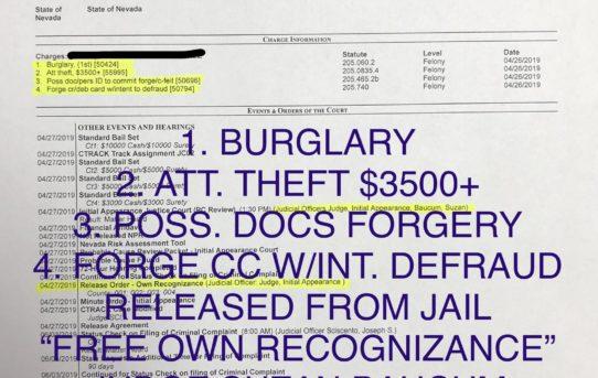 "BURGLARY + ATT. THEFT $3500 + POSS. DOCS FORGERY + FORGE CC W/INT. DEFRAUD - ""O.R."" RELEASE JUDGE SUZAN BAUCUM"