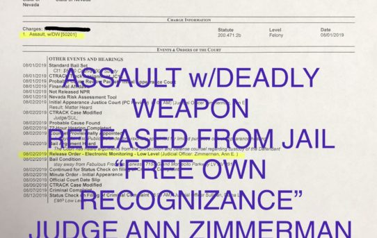 "ASSAULT w/DEADLY WEAPON - ""O.R."" RELEASE JUDGE ANN ZIMMERMAN"