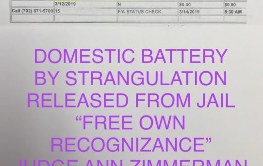 "DOM. BATT. BY STRANGULATION - ""O.R."" RELEASE JUDGE ANN ZIMMERMAN"