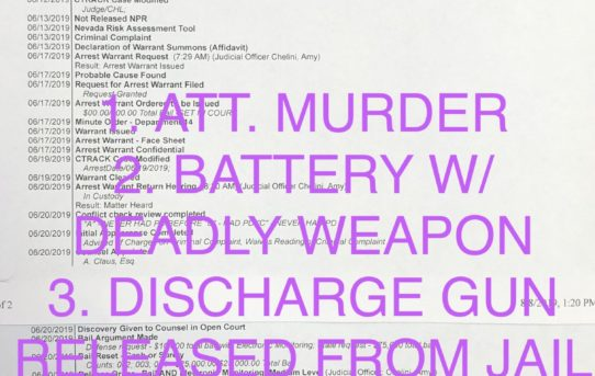 "ATT. MURDER + BATTERY W/DEADLY WEAPON + DISCHARGE GUN - ""O.R."" RELEASE JUDGE AMY CHELINI"
