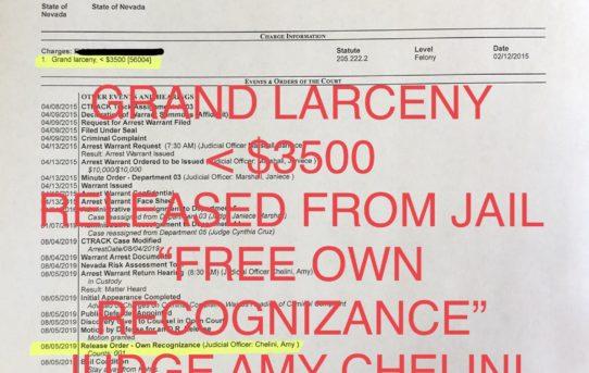 "GRAND LARCENY <$3500 - ""O.R."" RELEASE JUDGE AMY CHELINI"
