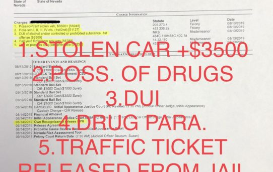 "STOLEN CAR+POSS. DRUGS+DUI+POSS. DRUG PARA. - ""O.R."" RELEASE JUDGE SUZAN BAUCUM"