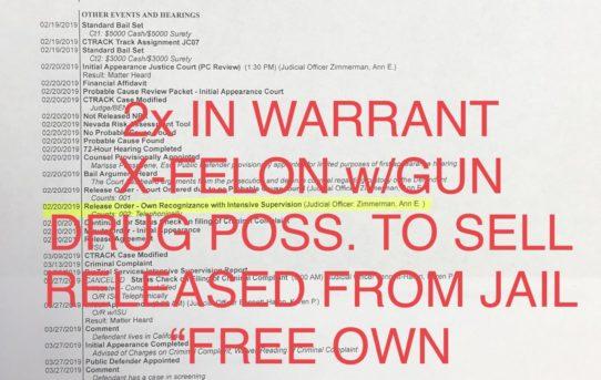 "2x IN WARRANT ON DRUG POSS. TO SELL+X-FELON w/Gun - ""O.R."" RELEASE JUDGE ANN ZIMMERMAN"
