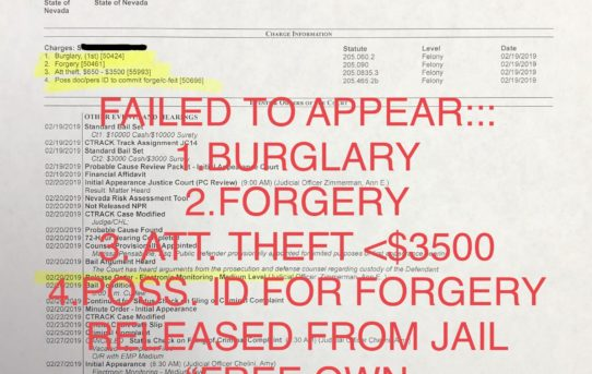 """F.T.A.: BURGLARY+FORGERY+THEFT <$3500 - """"O.R."""" RELEASE JUDGE ANN ZIMMERMAN"""