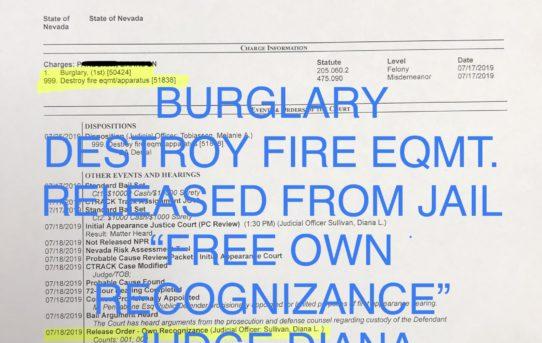 "BURGLARY + DESTROY FIRE EQUIP. - ""O.R."" RELEASE JUDGE DIANA SULLIVAN"