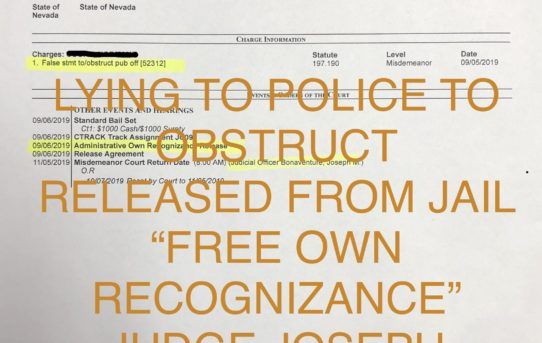 """LYING TO POLICE TO OBSTRUCT - """"O.R."""" RELEASE JUDGE JOSEPH BONAVENTURE"""