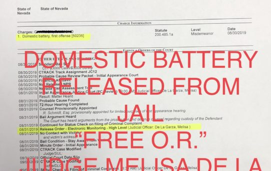 "DOM. BATTERY - ""O.R."" RELEASE JUDGE MELISA DE LA GARZA"