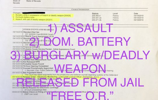 "ASSAULT+BATTERY+BURGLARY w/DEADLY WEAPON - ""O.R"" RELEASE JUDGE ANN ZIMMERMAN"