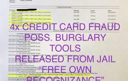 "4x CREDIT CARD FRAUD + BURGLARY TOOLS - ""O.R."" RELEASE JUDGE ANN ZIMMERMAN"