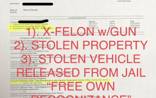 "X-FELON w/GUN+STOLEN VEHICLE/PROP. - ""O.R."" RELEASED JUDGE ANN ZIMMERMAN"